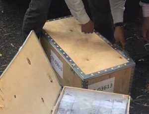 Numeracion cajas lilian tintori